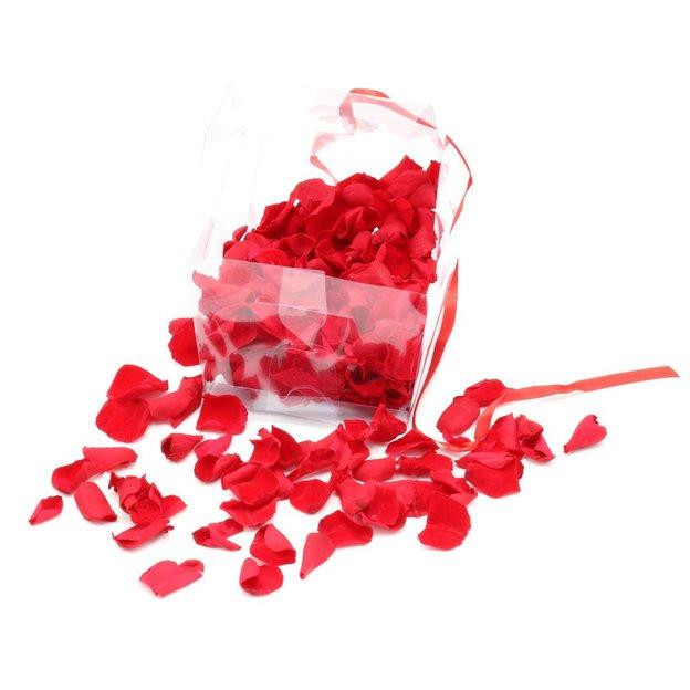 Ewige Rosenblätter rot