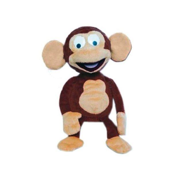 Drôle de singe - Funny Monkey