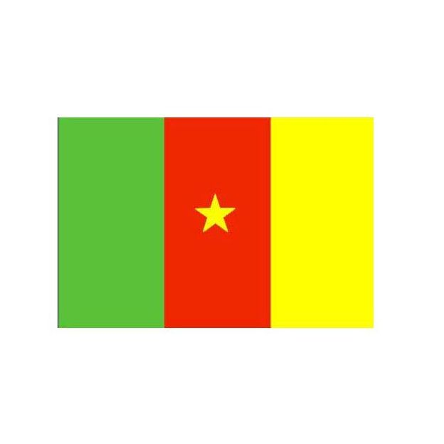 Fahne Kamerun