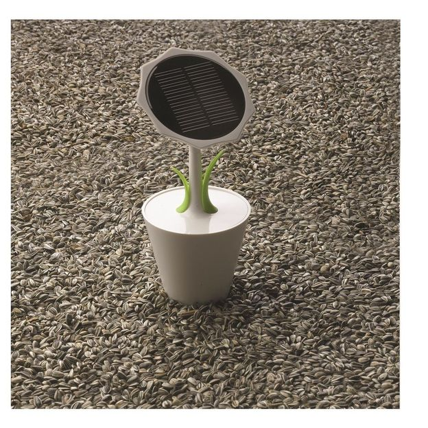 Chargeur solaire Tournesol