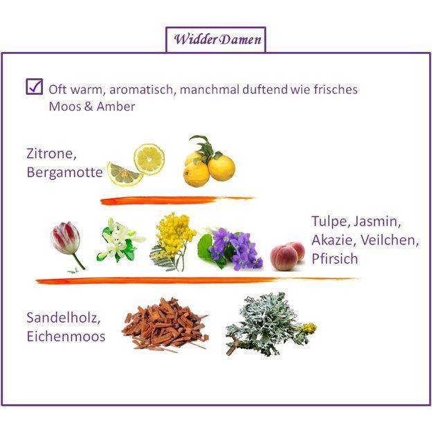 Sternzeichen Widder - Eau de Parfum für Frau