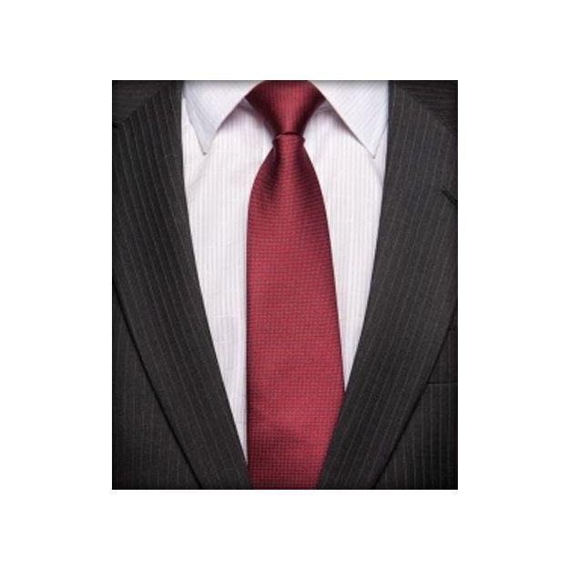 Cravate pré-nouée The Tie Monza - Taille C