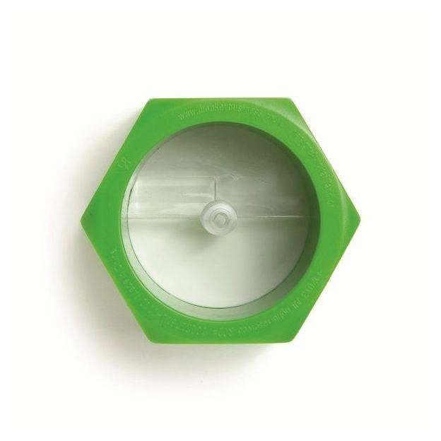 Taille légume Cucumbo vert