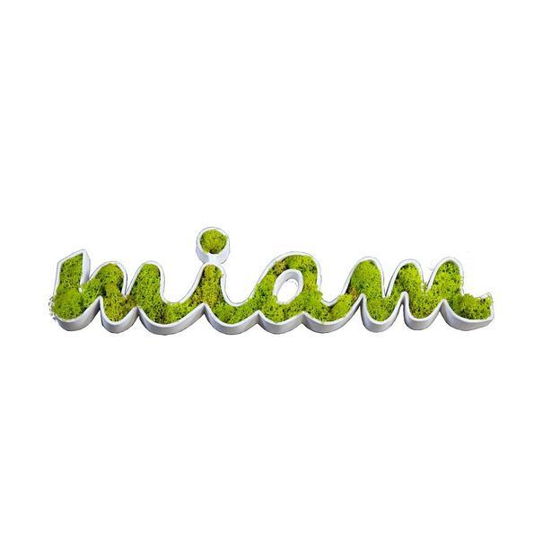 Flowerbox Miam Tableau végétal