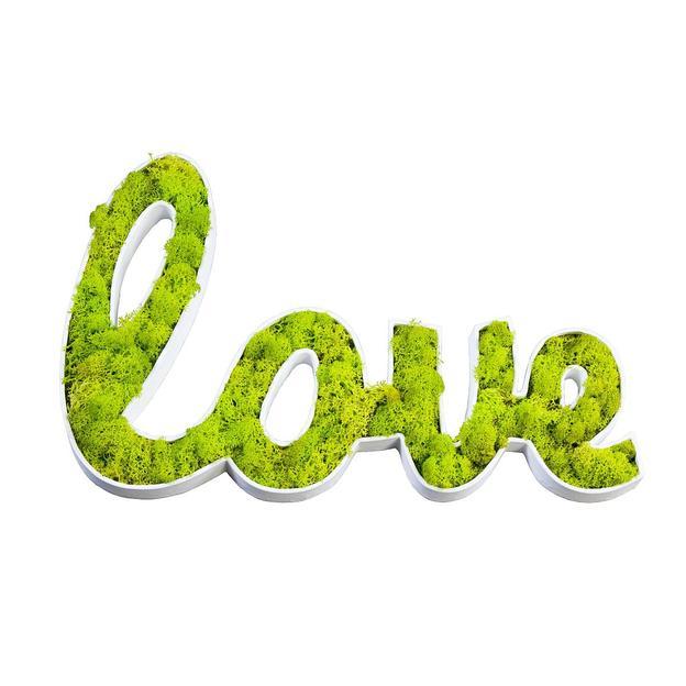 Flowerbox Love Tableau végétal