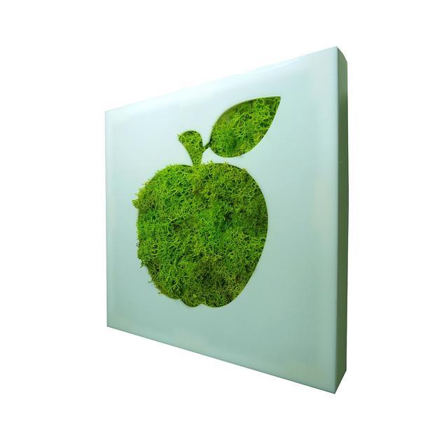 Tableau végétal Flowerbox Pomme