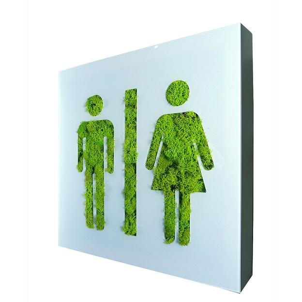 Flowerbox Toilettes Tableau végétal