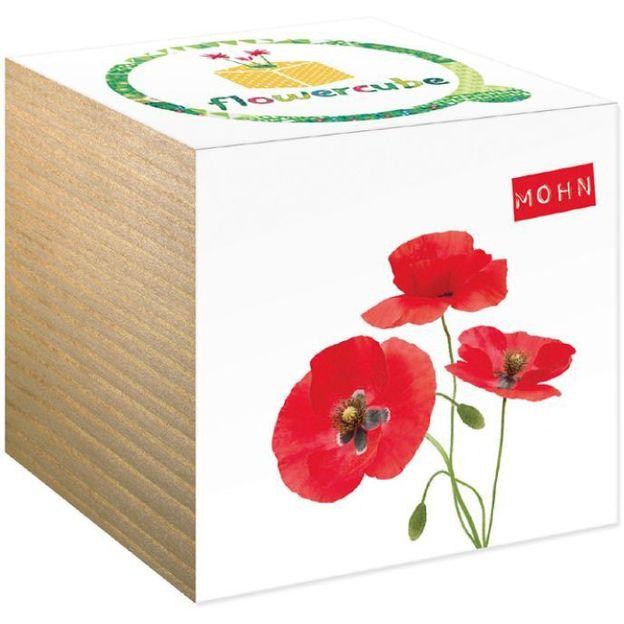 Boîte à fleurs FlowerCube Pavot