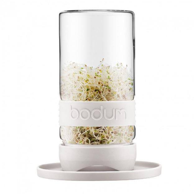 Bodum Grow Green Keimglas creme