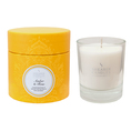 Shearer Candles Amber & Rose