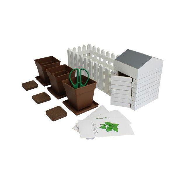 Kräutergewächs Geschenk-Set
