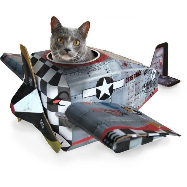 Spielhaus für die Katze Flugzeug