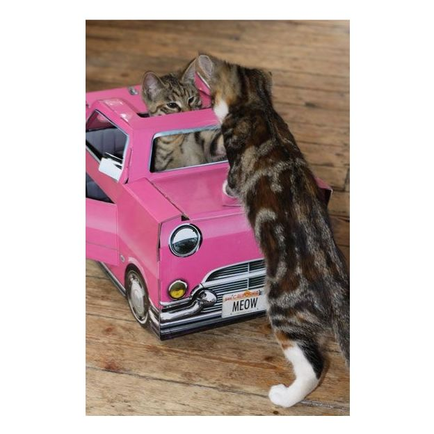 Cadillac pour Chat