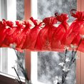 geschenkidee.ch Adventskalender Karo