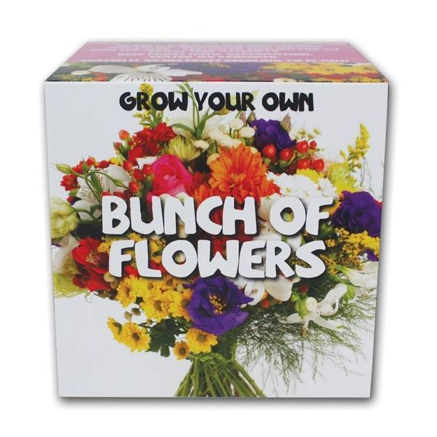 Bouquet de fleur en Kit Grow your Own