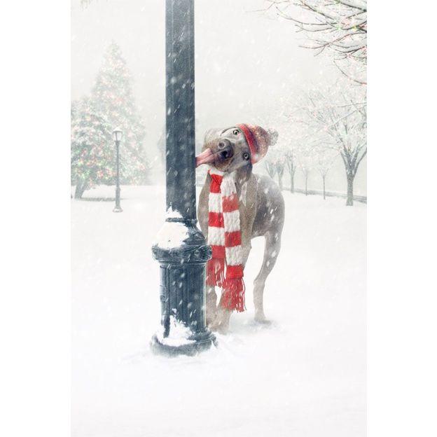 Weihnachtskarte Merwwy Chwithmuth