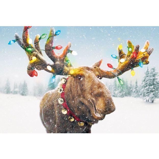 Weihnachtskarte Funny Reindeer