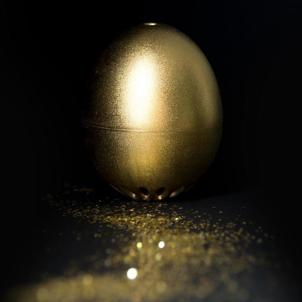 Das goldene PiepEi