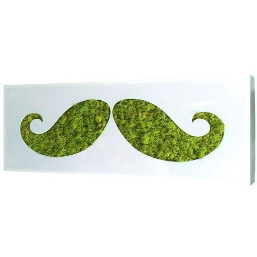 Flowerbox Moustache 90 x 40 cm