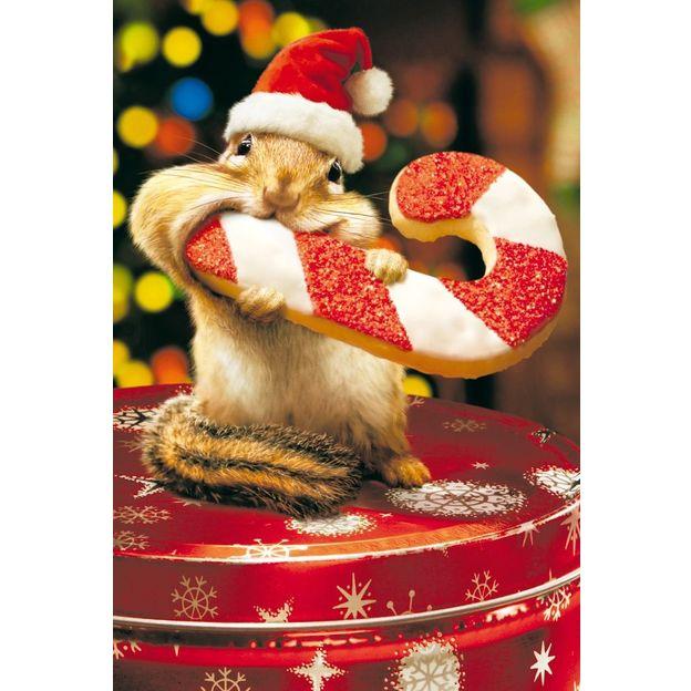 Carte de Noël écureuil & biscuit de Noël