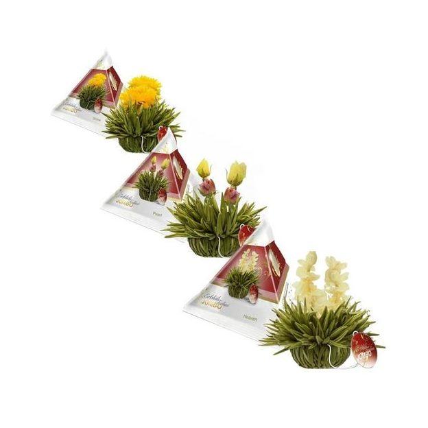 Coffret cadeau théière Jumbo et 3 fleurs de thé