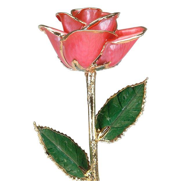 Rose rose à dorures 24 k