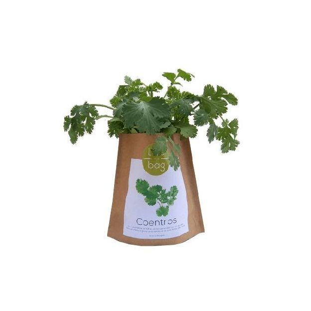 Kit plantation - Grow Bag coriandre