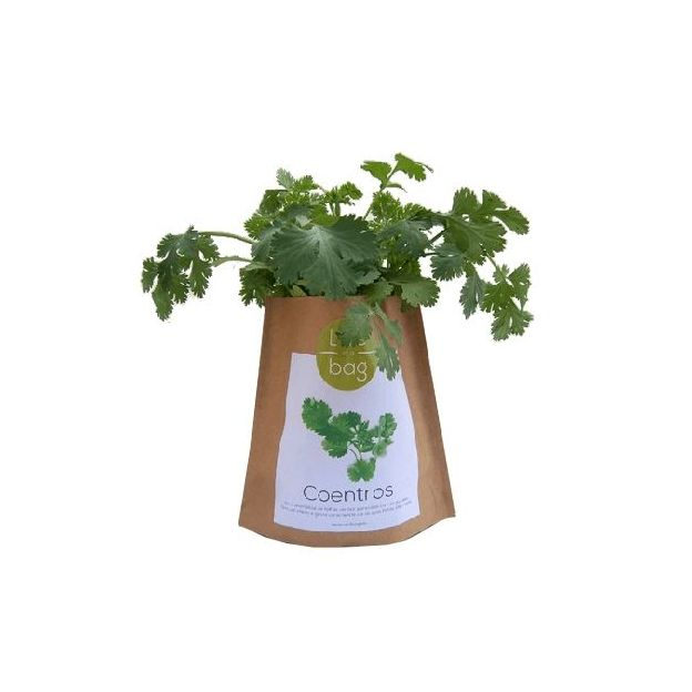 Kit plantation - Grow Bag coriandre