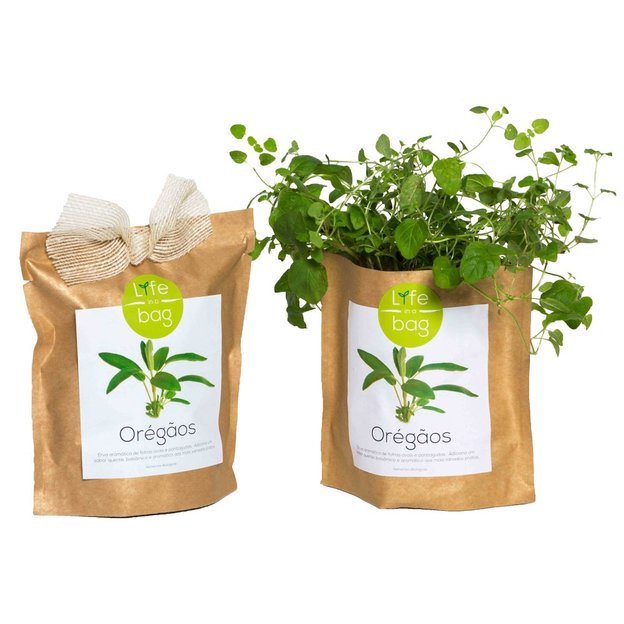 Kit plantation - Grow Bag oregan
