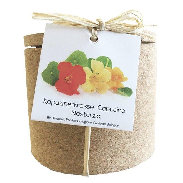Grow Cork Pot Kapuzinerkresse