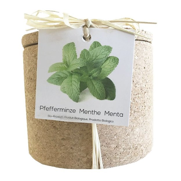 Kit plantation Grow Cork - Menthe