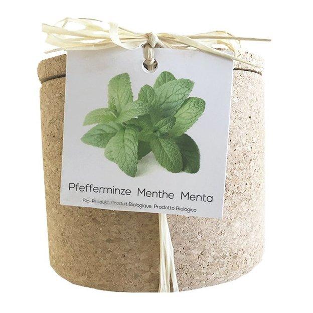 Grow Cork Pot Pfefferminze