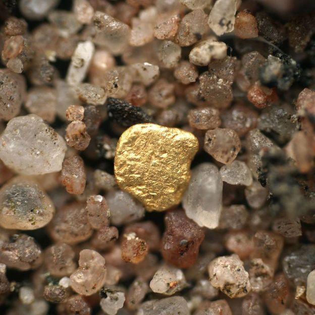 Goldwaschtag im Napfgebiet