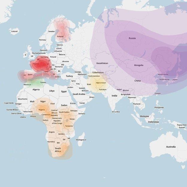 Analyse d'origine par ADN pour une personne