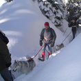 Schneeschuhtour Fronalpstock mit Huskybegleitung