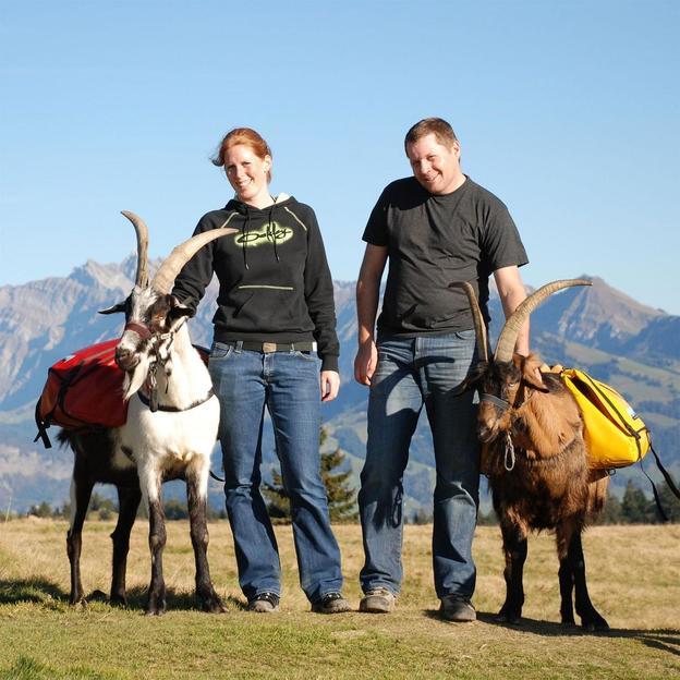 Tages Packgeissen Trekking für 2 Personen