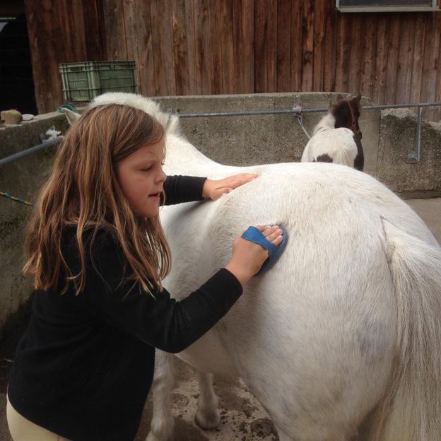 Pony Reiten für Kinder in Lottstetten