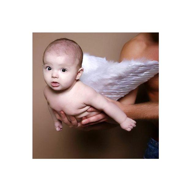 Baby Fotoshooting (1 Stunde)