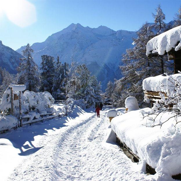 Crazy Snowdays - 2 nuitées et cours Snowbike à Graechen