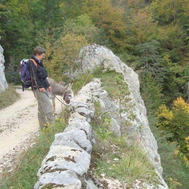 Esel Trekking