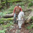 Esel und Ziegen Trekking