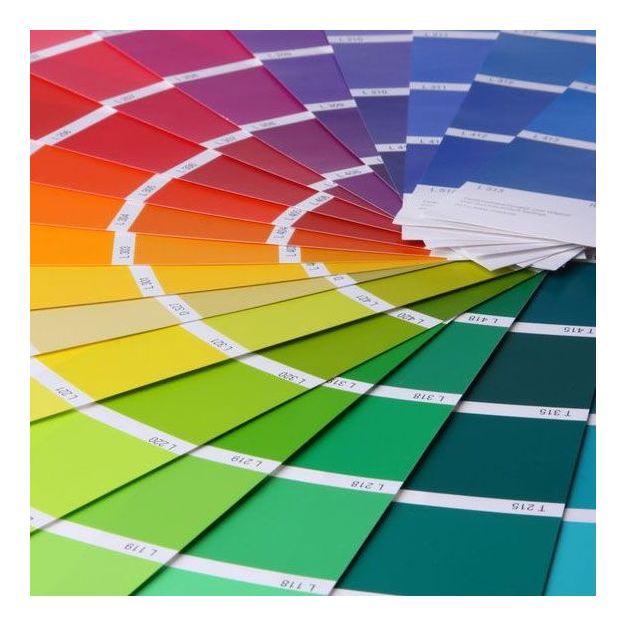Conseils de colorimétrie et de style à Berne (1pers)