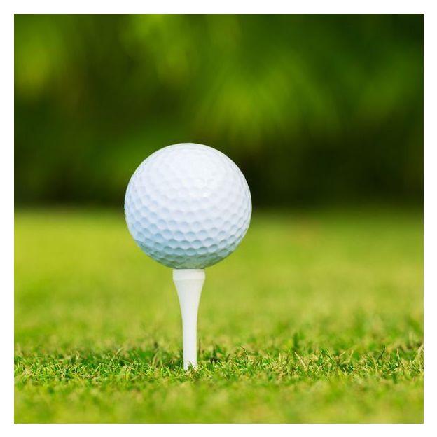 Golf Platzbegleitung 9-Loch