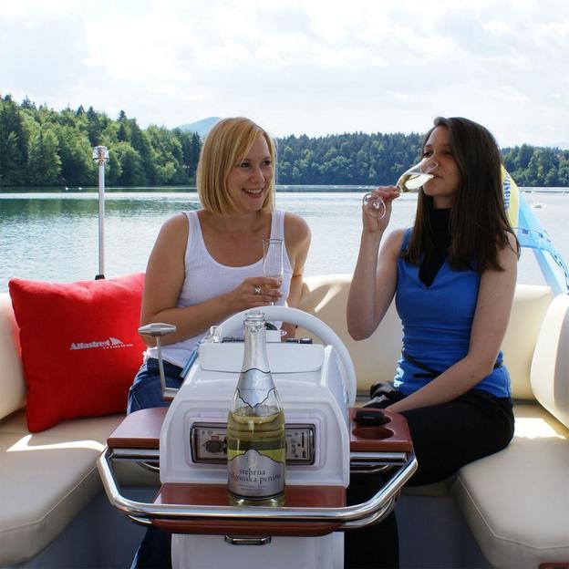 Sortie en Bateau sur le Lac de Zurich (6 h)