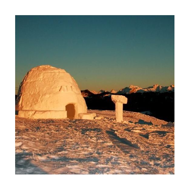 Entreprises: Construction d'un igloo