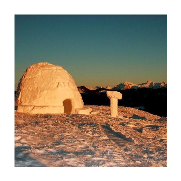 Entreprises: Construction d'un igloo