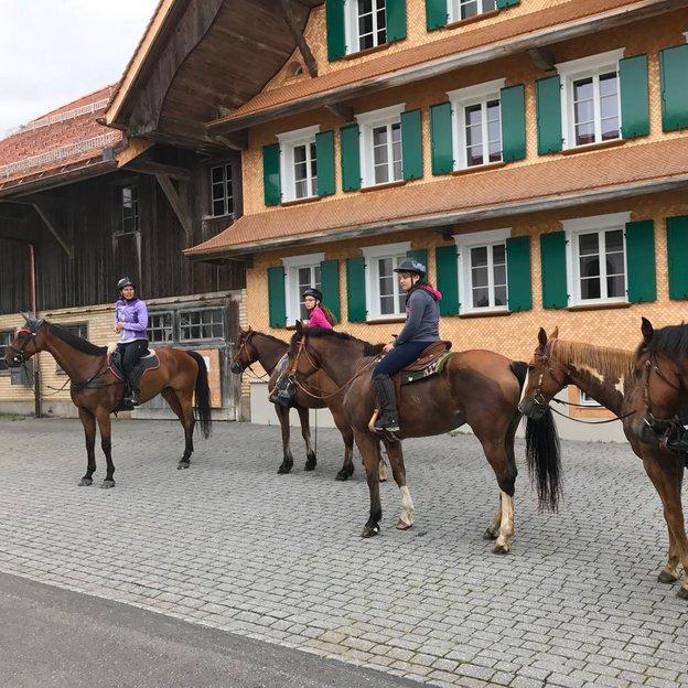 Randonnée équestre en montagne Davos 3h