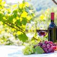 Übernachtung im Loiretal mit Wein Degustation