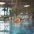 Parc Aquatique - Baignades, Sauna & Hammam