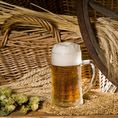 Halbtages Bierbraukurs in St. Gallen